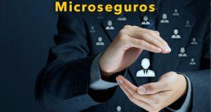 microseguro